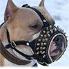 Купить намордник труба для собаки