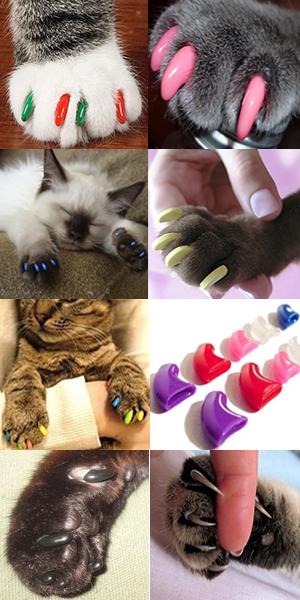 купить коготки для кошек