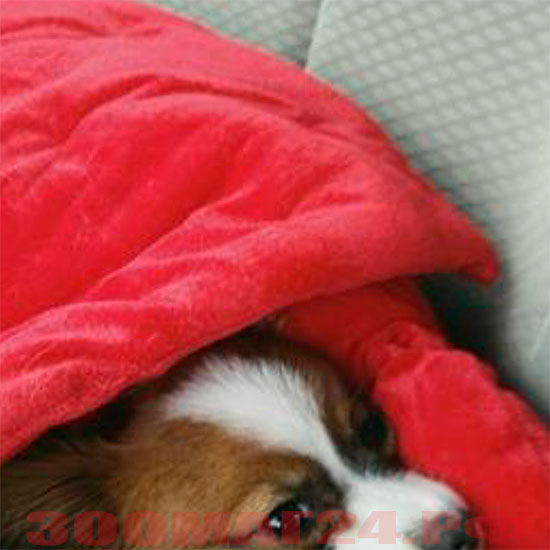 элитный лежак для собак