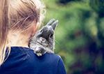 Почему стоит купить ребенку кролика?